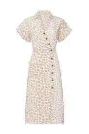 Coady Dress by Joie
