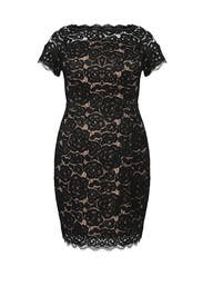 Black Lace Off Shoulder Dress by Adrianna Papell