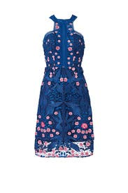 Blue Bird Lace Dress by Marchesa Notte