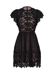 Black Lace Mix Dress by Rebecca Taylor