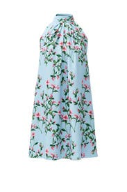 Light Blue Monte Dress by CYNTHIA STEFFE
