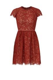 Rust Lace Dress by STYLESTALKER