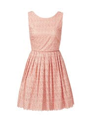 Blush Julia Dress by allison parris