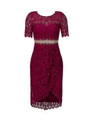 Magenta Midriff Lace Cocktail Dress by Marchesa Notte