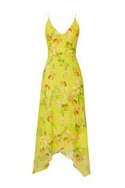 Floral Printed V Neck Dress by Harlyn