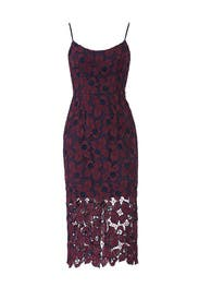 Plum Lace Aurora Dress by Dress The Population