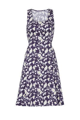 Floral Fit and Flare Dress by Derek Lam Collective