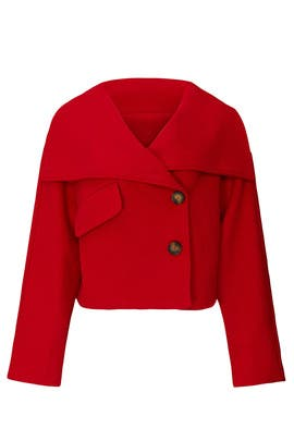 Belle High Collar Jacket by Line + Dot