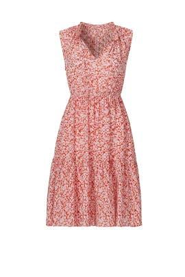 Sleeveless Provence Block Dress by Rebecca Taylor