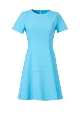 Davie Dress by Shoshanna