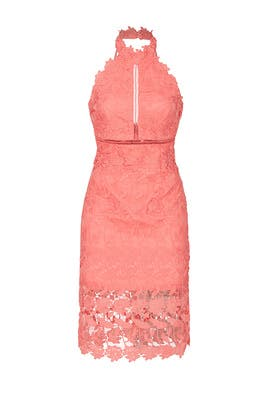 Noni Halter Dress by BARDOT
