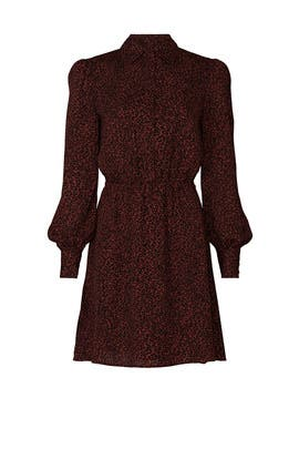 Leopard Print Sheryl Shirtdress by cupcakes and cashmere