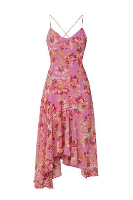 Floral Janine Dress by ASTR