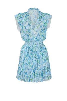 Edelie Dress by Shoshanna
