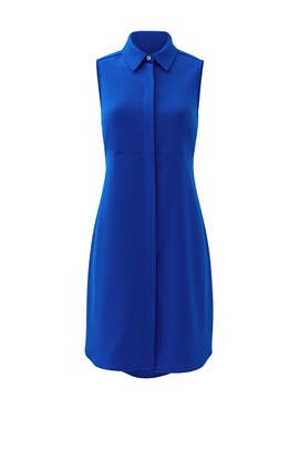 Royal Blue Logan Dress by Amanda Uprichard