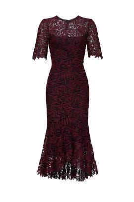 Vitti Dress by Shoshanna