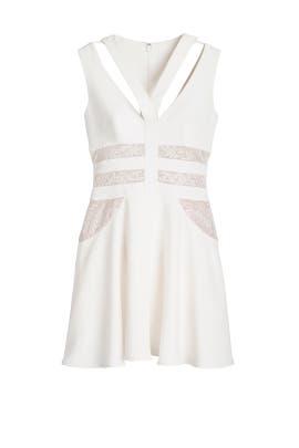 Shay Dress by BCBGMAXAZRIA