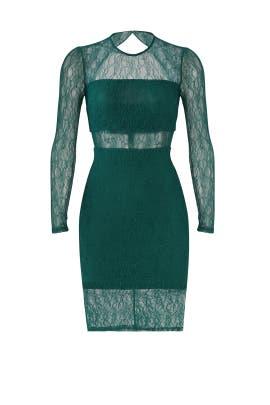 Green Sheer Lace Sheath by Ali & Jay