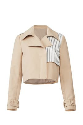 Caprivi Stripe Jacket by Nicole Miller