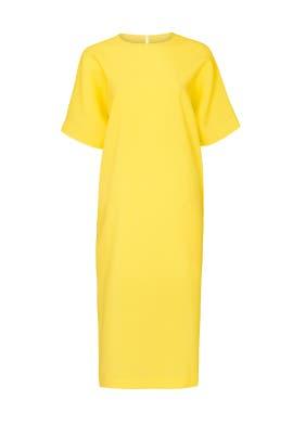 Osprey Dress by Rochas