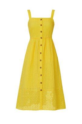 Coletta Dress by J.Crew