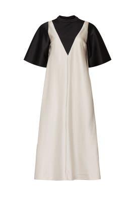 Plum Dress by Sandy Liang