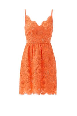 Orange Alcott Dress by Trina Turk
