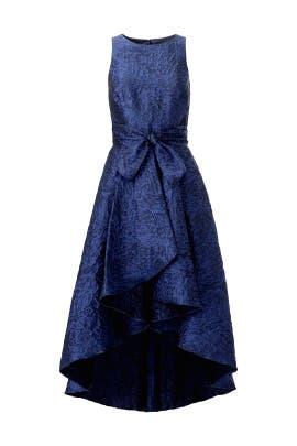 Preuss High Low Dress by Shoshanna