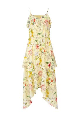 Floral Vanna Dress by Parker