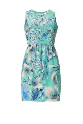 Waterlily Louise Dress by Shoshanna