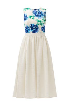 Ashley Dress by Cynthia Rowley