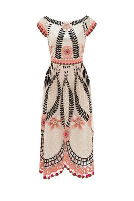Midi Belle Dress by Temperley London