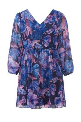 Blue Floral Print Dress by Alexia Admor