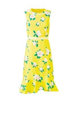 Magnolia Ruffle Dress by Draper James