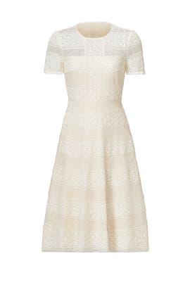 Cheryl Dress by BCBGMAXAZRIA