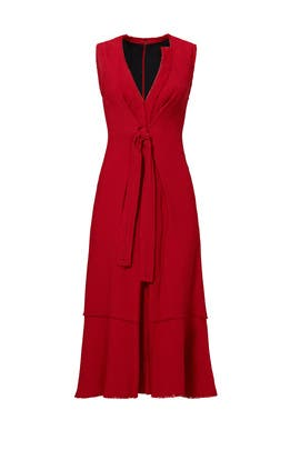 Merlot Ring Tie Dress by Proenza Schouler
