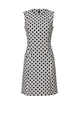 Polka Dot Roxy Dress by Slate & Willow