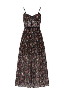 Eden Bustier Midi Dress by Allen Schwartz