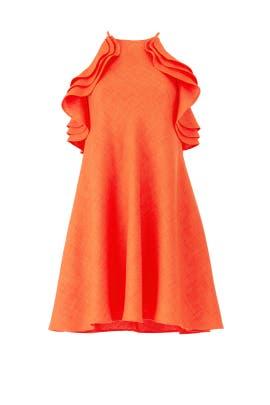 Orange Trapeze Dress by Badgley Mischka