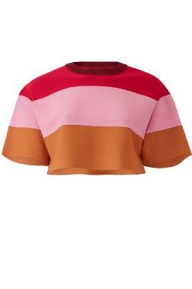 Pink Stripe Crop Top by Hervé Léger