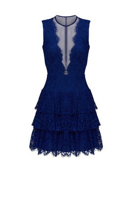 Cobalt Lace Illusion Dress by Nicole Miller