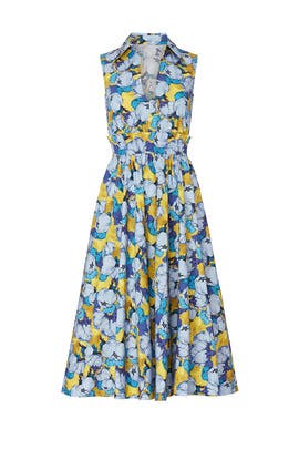 Light Blue Peony Printed Midi Dress by PINKO
