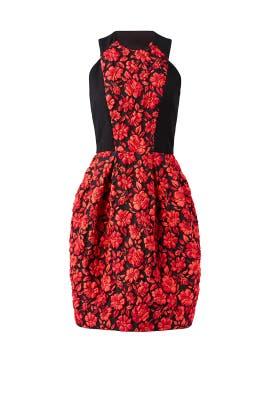 Geranium Floral Dress by Carmen Marc Valvo