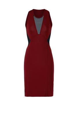 Burgundy Illusion Dress by Cut 25