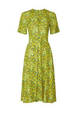 Jayla Dress by A.P.C.