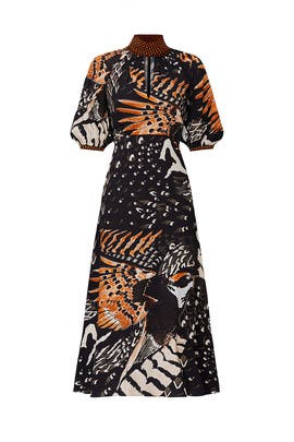 Rosella Bird Dress by Temperley London