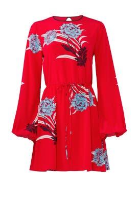 Cinch Waist Mini Dress by Diane von Furstenberg