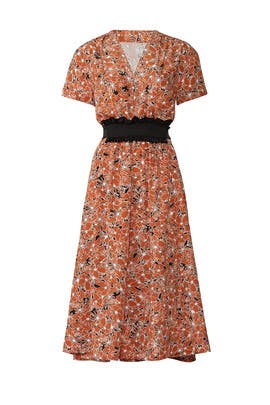 Floral Tie Waist Midi Dress by Cedric Charlier