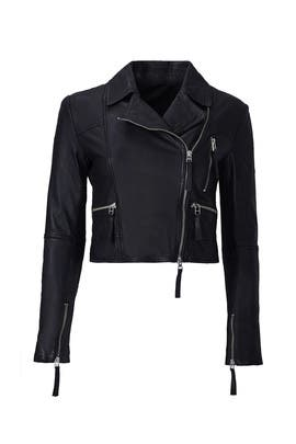 Hailey Leather Moto Jacket by Marissa Webb