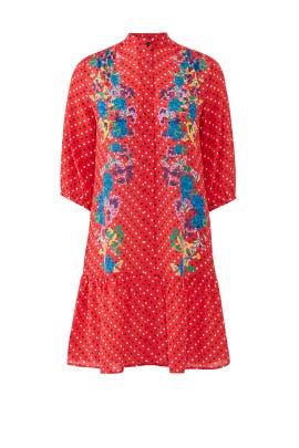 Tyra Dress by SALONI